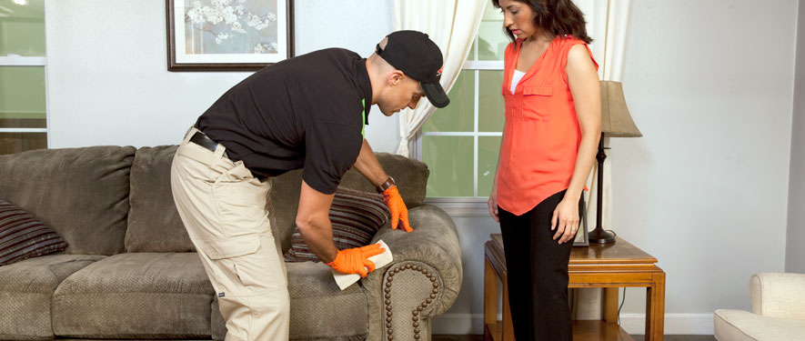 Longview, WA carpet upholstery cleaning